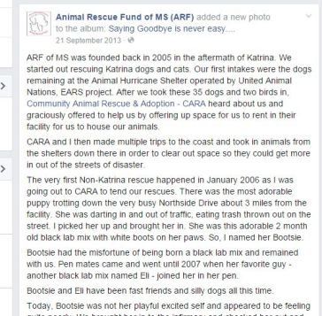 Elizabeth Pippa Jackson of Animal Rescue Fund of Mississippi works to destroy CARA